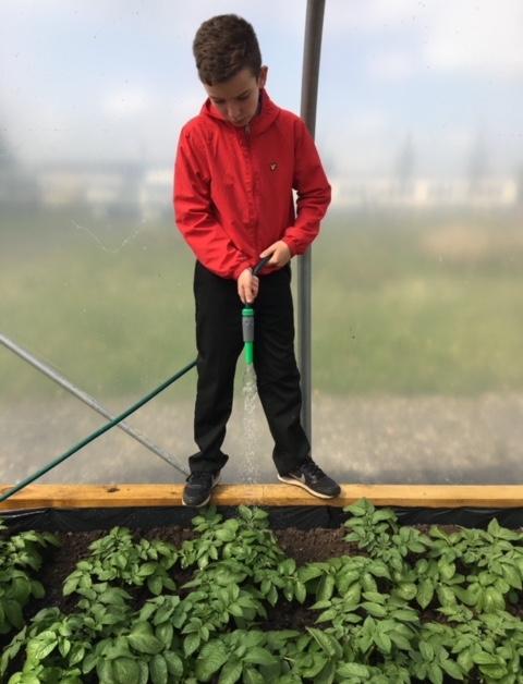 junior gardening 1